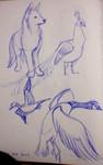 sb animals1