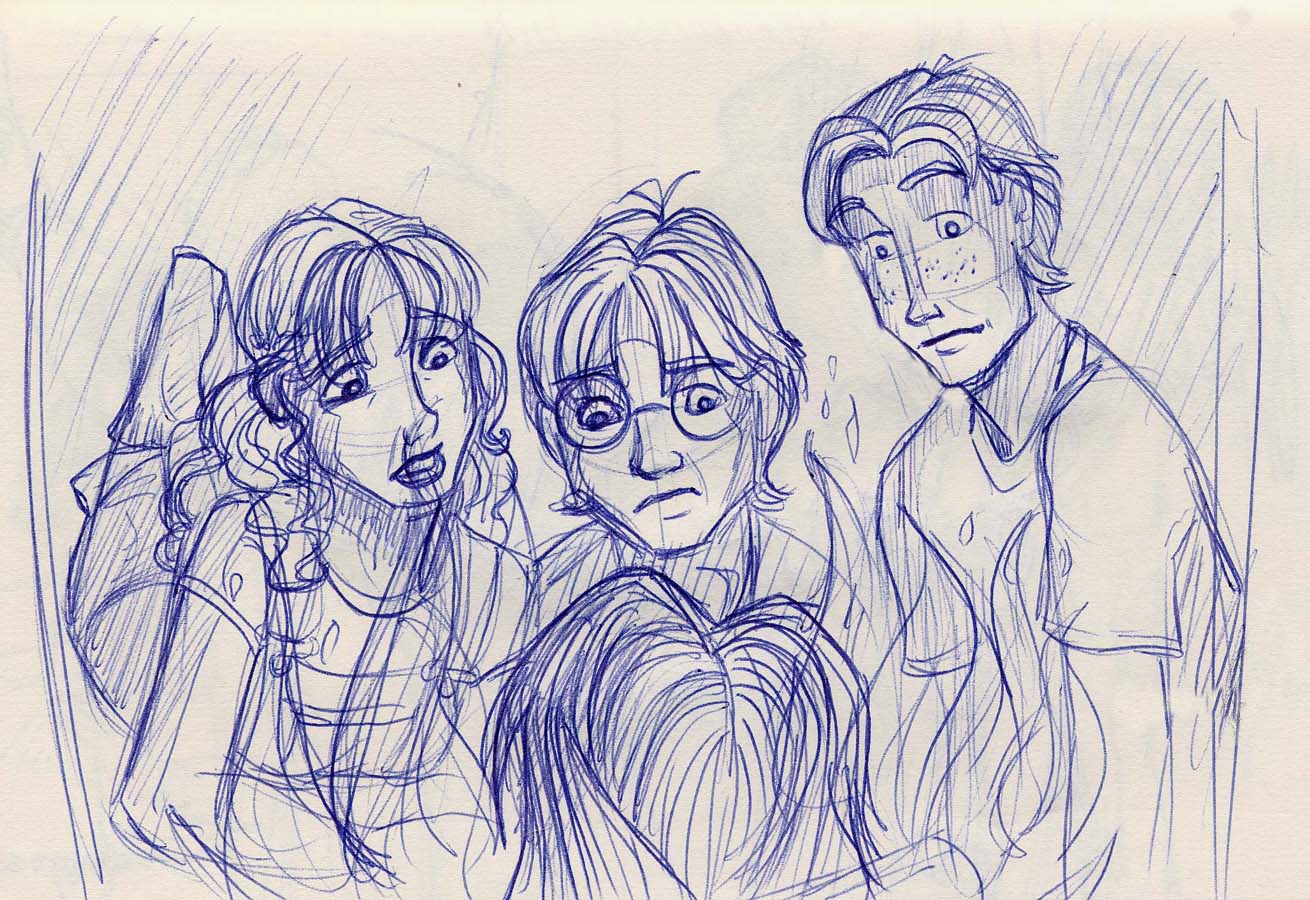 The trio receives an unexpected visit from Sirius in the Common Room fire